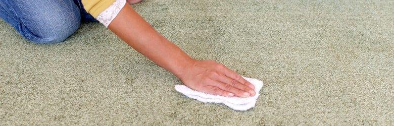 月に一回はカーペットの拭き掃除