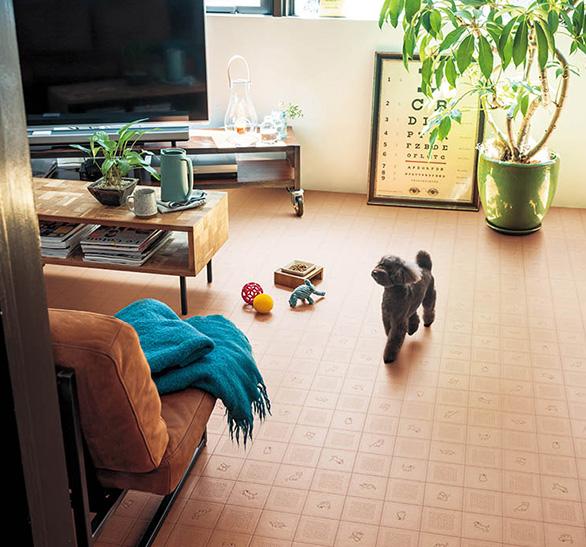 ペットのいるお部屋