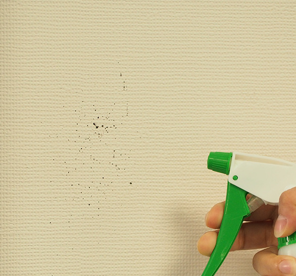 DIYでのカビ取り方法
