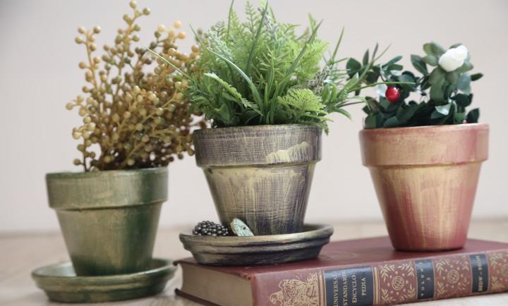 鉢植え ペンキ