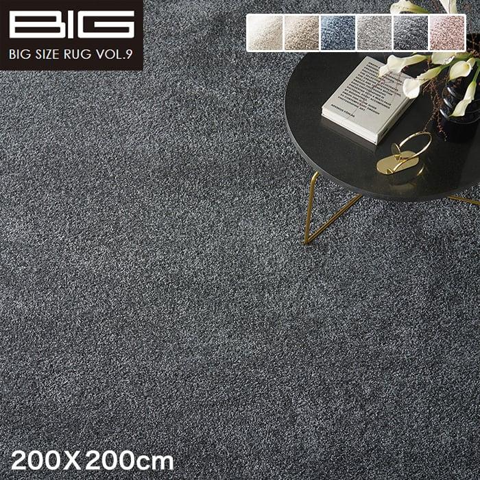 【抗アレルゲン】スミノエ BIG イルミエ 200X200cm