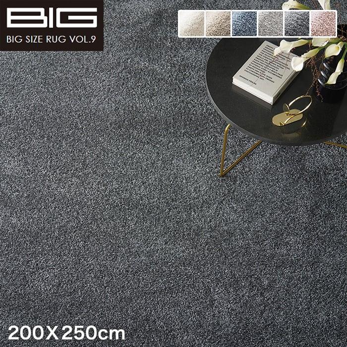 【抗アレルゲン】スミノエ BIG イルミエ 200X250cm